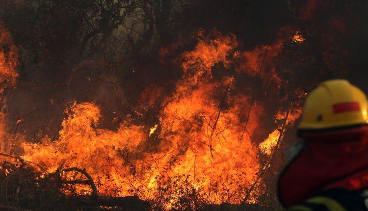 incendii_bolivia_25_august_2019