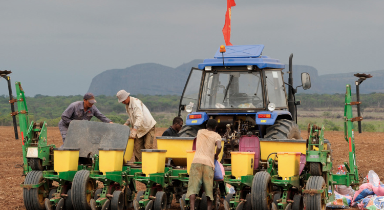 china_agricultura_7_mar_2020